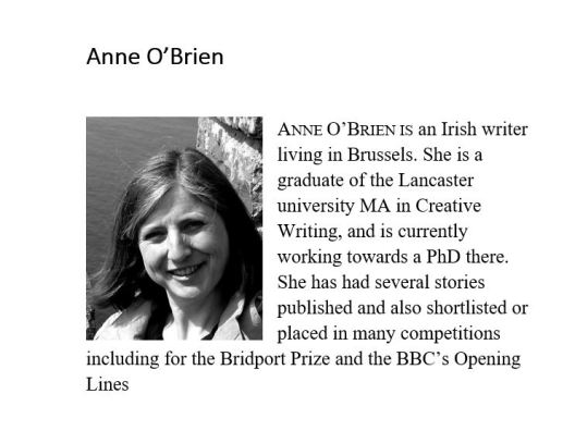 author image anne o'biren